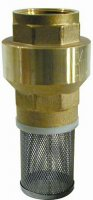 "Brass Spring Non Return Valve 3"" BSP Female Thread"